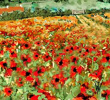 Poppy Field by WILT