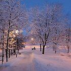 Winter In Suburbia I by HELUA