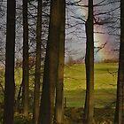 Druids Wood by WatscapePhoto