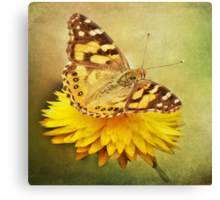 Fly Away With Me ~ Canvas Print