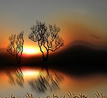 1393 by peter holme III