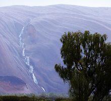 Rain on Uluru by Julia Harwood