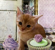 Party For One Kitten by CitC