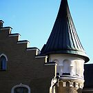 Detail of the Svidja Manor roof, Finland by Tarolino