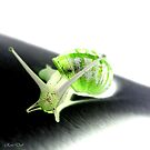 The Green Salad Snail by RoseDub