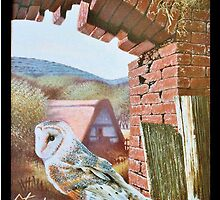 Downland Barn Owls by Stevie Gilmore