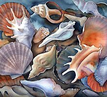 Box of shells 3 by Karin Zeller