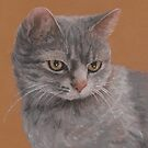 Contemplative Cat by Pam Humbargar