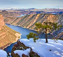 Flaming Gorge at Red Canyon by Kim Barton