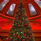 Christmas In The Dome by Lynne Morris