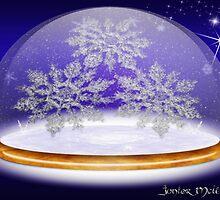 Winter Snowglobe by Junior Mclean