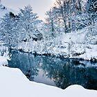 Winter Wonderland by James Grant