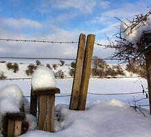 A Winter Style by Lynne Morris