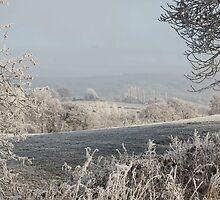 Empty Fields by missmoneypenny