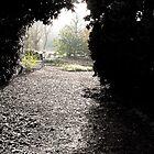 secret garden room by tego53