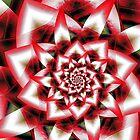Chrysanthemum by Chazagirl