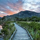 The Road to Mt.Oberon by Daniel Robertson