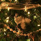A Partridge in a Christmas tree.....  by Chelei