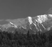 Panorama of Denali_Mt McKinley - A Black & White Study by Barbara Burkhardt