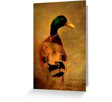 A duck ... Greeting Card