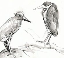 two birds standing around by WoolleyWorld