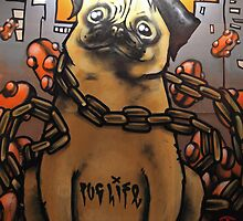 Pug life....*for josh fuess* by joel Durbridge