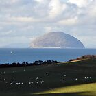 Ailsa Craig from Bynehill by Bickeringbush
