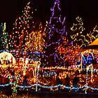 Festival of Lights at VanDusen Botanical Garden - Vancouver, Canada by Carol Clifford