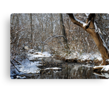 After the Snowstorm Canvas Print