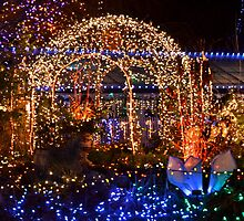 Festival of Lights - VanDusen Garden - Vancouver, Canada by Carol Clifford