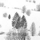 Winter Spirits by topazlights