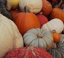 Pile on gourd by PoeticSilence