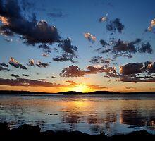 Pelican Sunset on Lake Macquarie NSW Australia by Bev Woodman