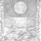 Fishes and the Moon - Silver Point by Nestor