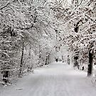 Winter Walk in  Fairytale by AnnieSnel