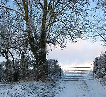Snowy Gate by babibell