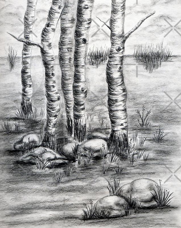 Meeting Lake by Josie Duff