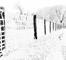 WINTER SHOT IN HIGH KEY BLACK AND WHITE by Johan  Nijenhuis