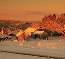 Warm colours at farm buildings on a winter morning.  by Fred Taylor
