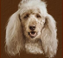 Rylie my standard poodle by Trish Loader