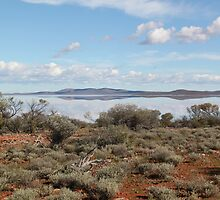 Lake Gairdner 1 by Cheryl Parkes