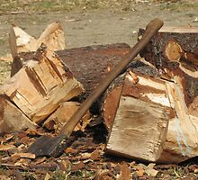 Wood Pile by Tracy-Anne Cope