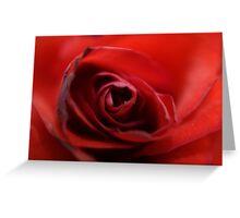 Dreamy Macro Rose Greeting Card