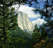 Yosemite National State Park by upthebanner