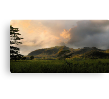The Valley of Light Canvas Print