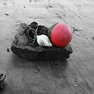 About a buoy by Roxy J