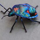 All Colors of Rainbow Beetle  by Karry Smith