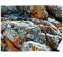 Colouful Rocks at Rocky Cape National Park,Tasmania, Australia. Poster