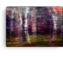 Winter Wind and Woods and Rain Canvas Print