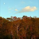 Paper Moon Over Cumberland Ridge by paintingsheep